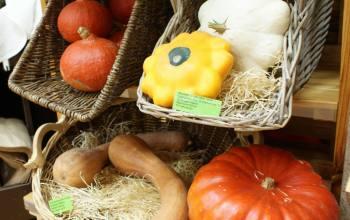 Légumes bio Bessines