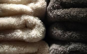 Serviettes de toilette Coton Bio, Niort